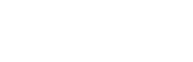 ZARA_logo_BLANCO_CORTO